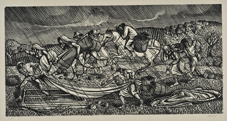 Βροχή στον κάμπο, 1953