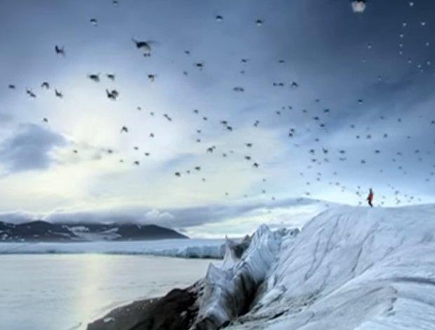 Πιγκουίνοι μετατρέπονται σε αποδημητικά πουλιά... (BBC, 2008)