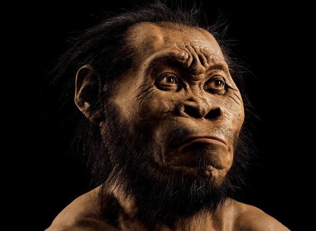 H αναπαράσταση του Homo naledi παρουσιάζεται στο τεύχος Οκτωβρίου του National Geographic