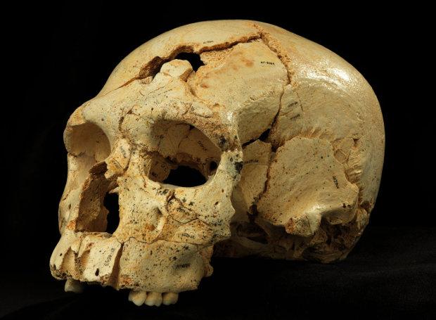 Το κρανίο του ανθρώπου που δολοφονήθηκε πριν από 430 χιλιάδες έτη