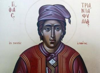 Άγιος Τριαντάφυλλος (? – 1680)