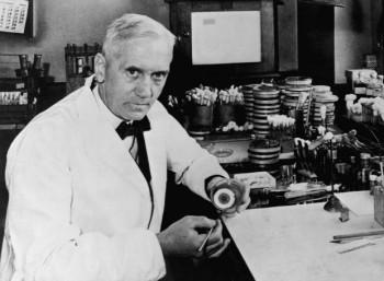 Ο Αλεξάντερ Φλέμινγκ στο εργαστήριό του.