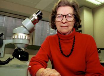 Αν Μακλάρεν (1927 – 2007)