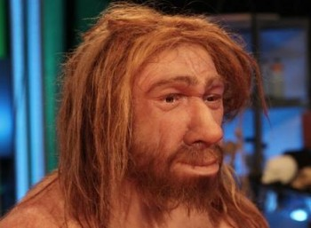 Οι Νεάντερταλ εξαφανίστηκαν γιατί είχαν μεγαλύτερα μάτια από τους Homo Sapiens