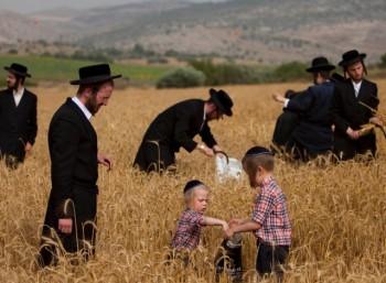 Η Εβραϊκή Πεντηκοστή