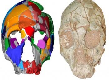 Ένα κρανίο 210.000 ετών από την Ελλάδα το αρχαιότερο δείγμα «έμφρονος ανθρώπου» (homo sapiens) στην Ευρασία
