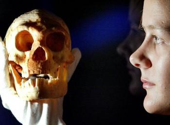 Ανακαλύφθηκαν σφραγίσματα δοντιών ηλικίας 13.000 ετών